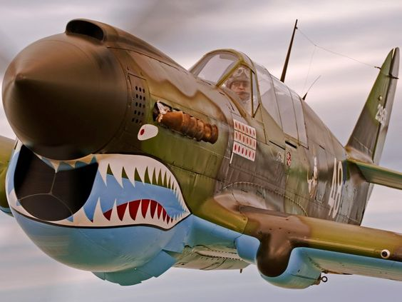 Tigers, Teeth, and Sharks, the famed P-40 of the Flying Tigers.